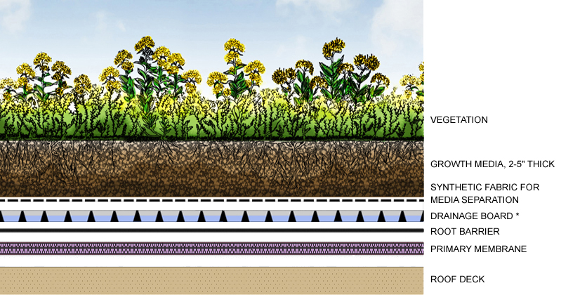 Example Shows One Of Many Types Of Drainage Designs For